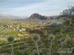 طبیعت زیبای فامور کازرون/ روستای هلک